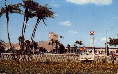 View of Busch Gardens - Tampa, Florida FL Postcard