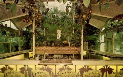 The Kapok Tree Inn - Clearwater, Florida FL Postcard