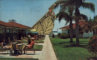 The Flamingo - St Petersburg, Florida FL Postcard