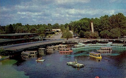 Glass Bottom Boats - Silver Springs, Florida FL Postcard