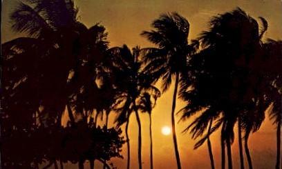 A Magnificent Florida Sunrise - Misc Postcard