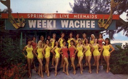 Weeki Wachee Mermaid Show - St Petersburg, Florida FL Postcard