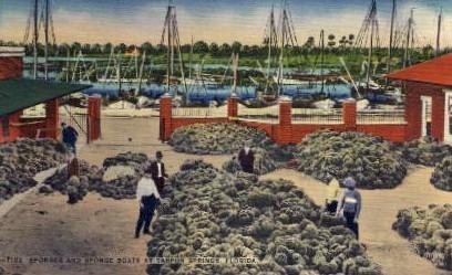 Sponges and Sponge Boats  - Tarpon Springs, Florida FL Postcard