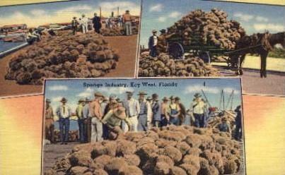 Sponge Industry - Key West, Florida FL Postcard