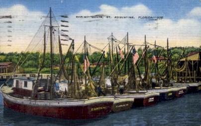 Shrimp Boats - St Augustine, Florida FL Postcard