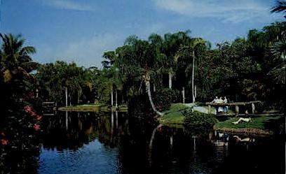 In Tropical Sarasota - Florida FL Postcard