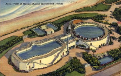 Aerial View of Marine Studios - Marineland, Florida FL Postcard