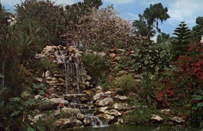 Waterfall - Cypress Gardens, Florida FL Postcard