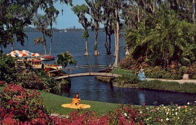 Roses and Bougainvillea - Cypress Gardens, Florida FL Postcard