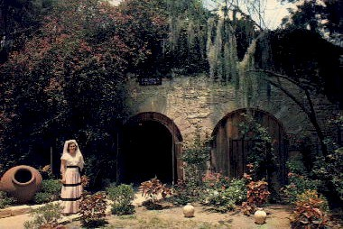 The Fountain of Youth - St Augustine, Florida FL Postcard