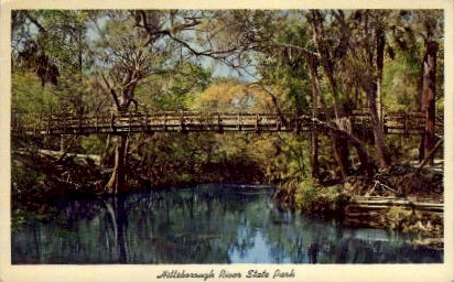 Suspension Bridge - Hillsborough River State Park, Florida FL Postcard
