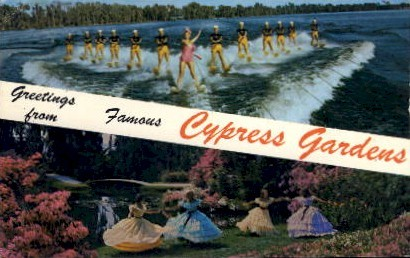 Greetings - Cypress Gardens, Florida FL Postcard