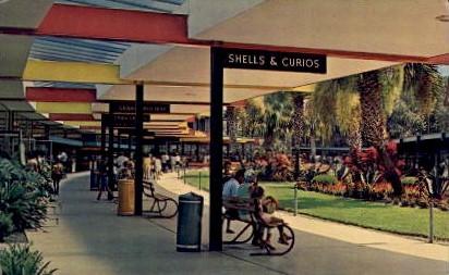 Silver Springs - Florida FL Postcard
