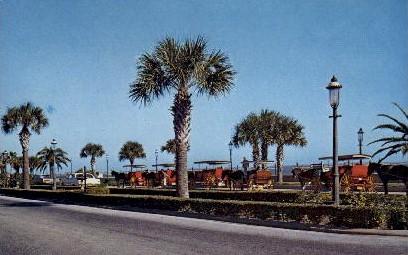 St Augustine - Florida FL Postcard
