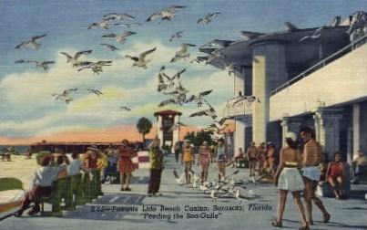 Lido Beach Casino - Sarasota, Florida FL Postcard
