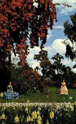 Bougainvillea - Cypress Gardens, Florida FL Postcard