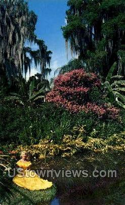 Princess Flower - Cypress Gardens, Florida FL Postcard