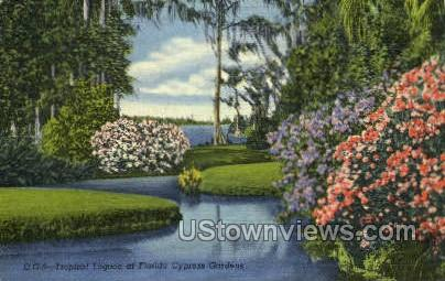 Lagoon - Cypress Gardens, Florida FL Postcard