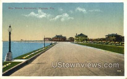 Bay Shore - Tampa, Florida FL Postcard