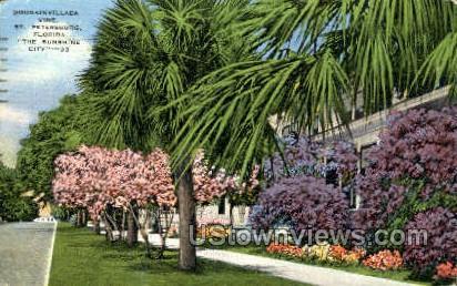Bougainvillea Vine - St Petersburg, Florida FL Postcard