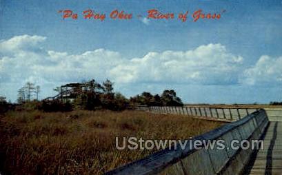Pa Hay Okee - Everglades National Park, Florida FL Postcard