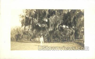 Fort Thompson, Florida, FL, Postcard