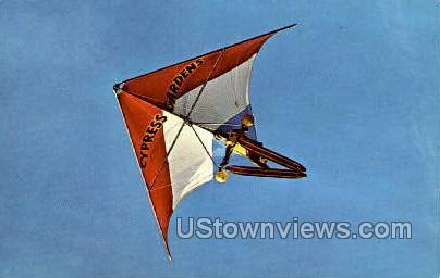 Delta Wing - Cypress Gardens, Florida FL Postcard