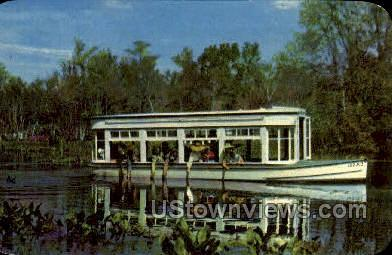 Florida's International Attraction - Silver Springs Postcard