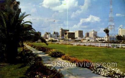 Skyline - Tampa, Florida FL Postcard