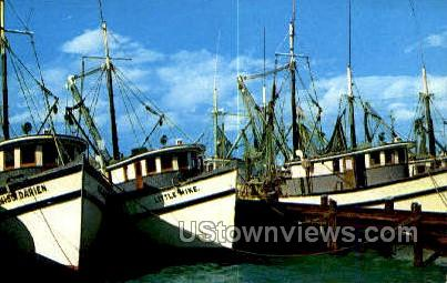Shrimp Fleet - Key West, Florida FL Postcard