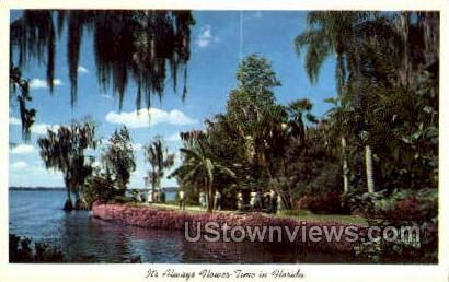Colorful Flowers - Cypress Gardens, Florida FL Postcard