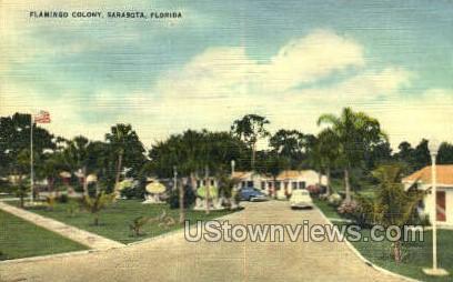 Flamingo Colony - Sarasota, Florida FL Postcard