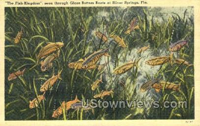 Fish-Kingdom - Silver Springs, Florida FL Postcard