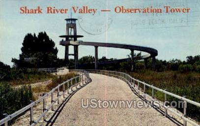 Shark River Valley - Everglades National Park, Florida FL Postcard