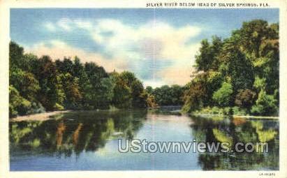 Silver River - Silver Springs, Florida FL Postcard