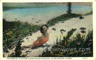 The Tempter - Silver Springs, Florida FL Postcard