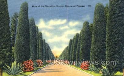 Streets of Florida, Florida, FL, - Streets of Florida Postcards Postcard