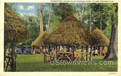 Huts - Silver Springs, Florida FL Postcard