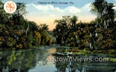 Fishing - Silver Springs, Florida FL Postcard