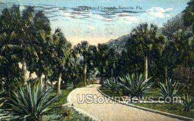 Hollywood Grounds - Sarasota, Florida FL Postcard