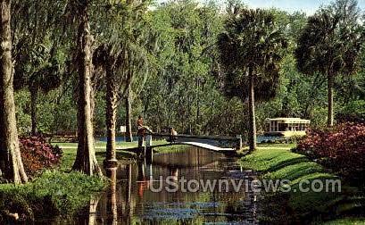 Azalea Borders - Silver Springs, Florida FL Postcard