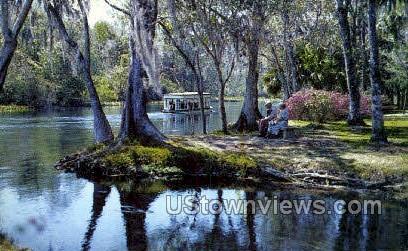 Silver Springs, Florida, FL, Postcard