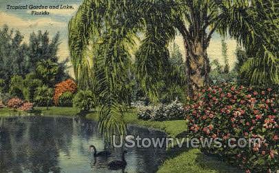 Tropical Garden - Sarasota, Florida FL Postcard