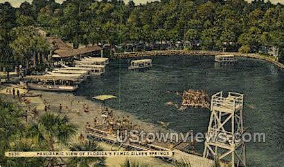 Panoramic - Silver Springs, Florida FL Postcard