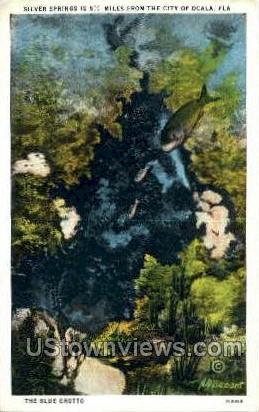Blue Grotto - Silver Springs, Florida FL Postcard