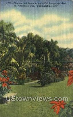 Flowers & Palms - St Petersburg, Florida FL Postcard