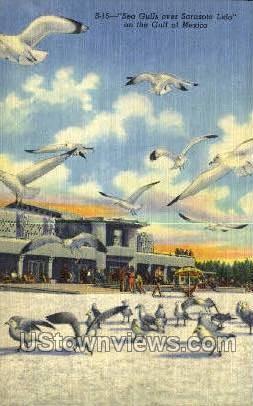 Sarasota Lido - Gulf of Mexico, Florida FL Postcard