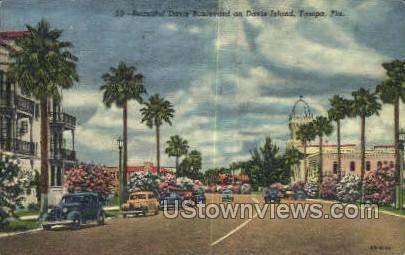 Davis Blvd - Tampa, Florida FL Postcard