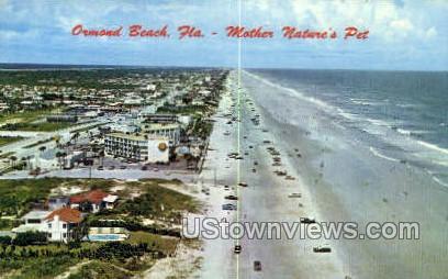 Mother Nature's Pet - Ormond Beach, Florida FL Postcard