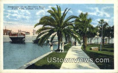 Promenade, Hillsboro River, Plant Park - Tampa, Florida FL Postcard